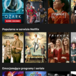 Design Critique: Netflix app (Android version)